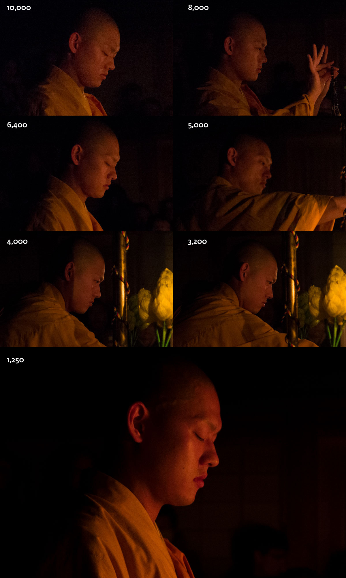 Full view, goma taki monk, head sequence