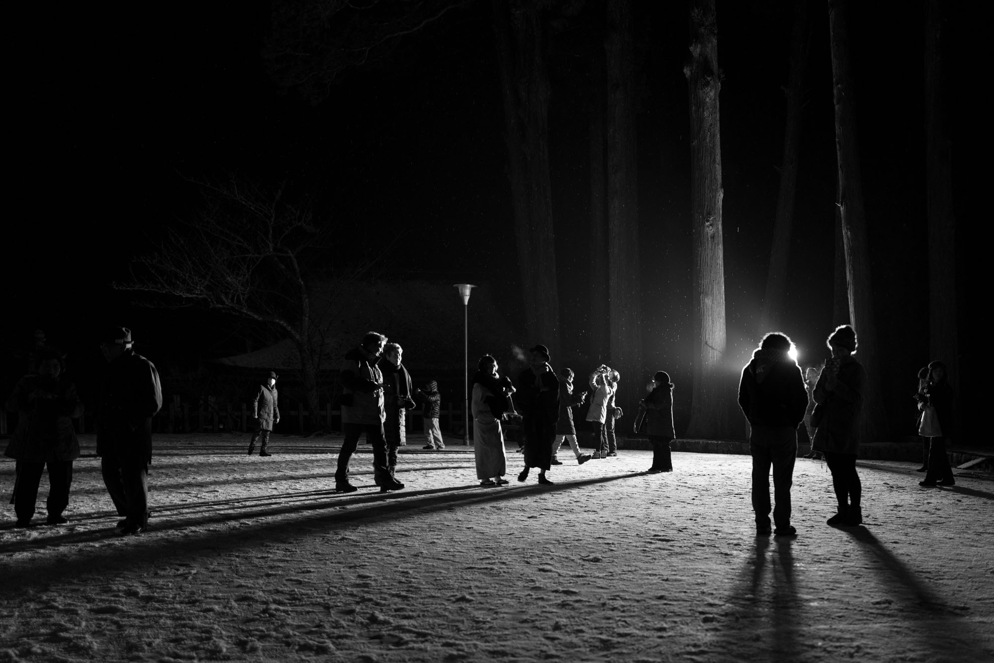 Winterwalk, Koyasan, cropped