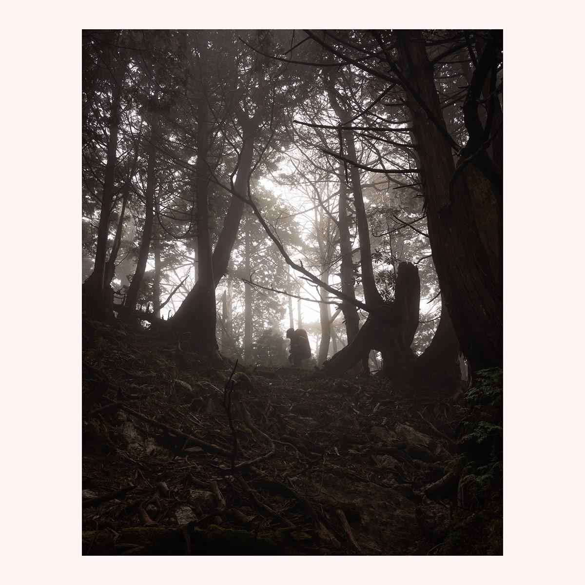 Fog, mist, hiker